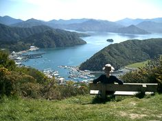 Looking out over Picton and the Queen Charlotte Sound in Marlborough, New Zealand.