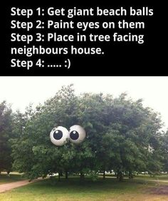 Step 1. Get giant beach bslls. Step2. Paint eyes on them. Step 3. Place in a tree facing neighbors house. Step 4.