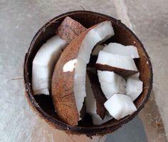 Coconuts! #Beachwear #LadyLuxSwimwear #LuxurySwimwear #bikinis