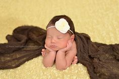 Dark Brown Cheesecloth Baby Wrap Cheese Cloth | Beautiful Photo Props