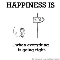 Happiness #30: Happiness is when everything is going right.