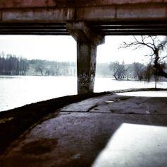 Run in the park. Tineretului Park