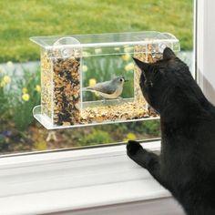 One-Way Mirror Bird Feeder %u2013 $30 great idea