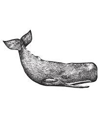 Image result for traditional sperm whale tattoo