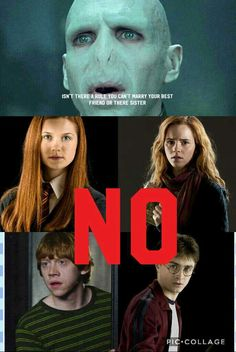 396 Best Ron and Hermione images in 2019 | Ron, hermione