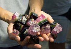 TRi-Color Watermelon & Black Tourmaline   GIA-Brazil-gem-mines.jpg