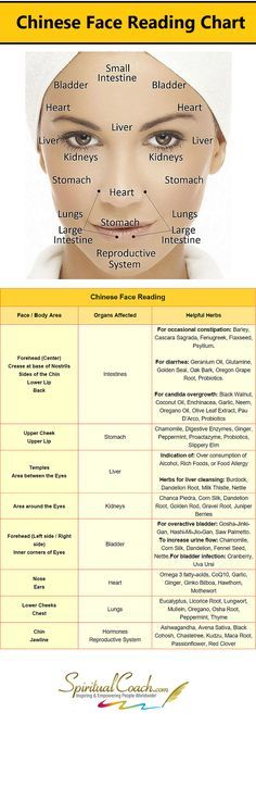 Chinese Facial Reading Chart - Learn what's going on inside your body by reading your face: http://www.spiritualcoach.com/chinese-face-reading/ #tcm #chinesemedicine #facereading