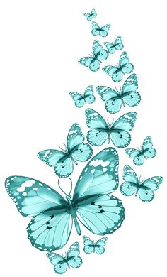 """Photo from album """"▒ Насекомые ▒"""" on Yandex. Butterfly Clip Art, Butterfly Drawing, Butterfly Pictures, Butterfly Kisses, Butterfly Cards, Blue Butterfly, L Wallpaper, Cellphone Wallpaper, Wallpaper Backgrounds"""