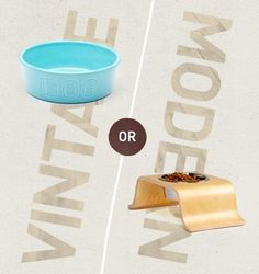 This...or that: dog bowls • Vintage or modern?