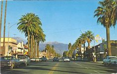 Florida Ave., Hemet California 1960s       The trees are so much taller now! Nice & Tall
