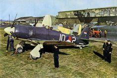 Aircraft of the R.A.F. and S.A.A.F. during World War II (27)