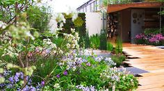 In Pictures: The RHS Chelsea Flower Show