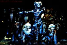 Cats That Dont Shed, Jellicle Cats, Cats Musical, Theater, Musicals, Broadway, Batman, London, Superhero
