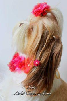 Lolla com colar e laço de flores