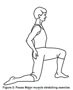Hip Adductor Stretch Trigger Points Pinterest Muscle