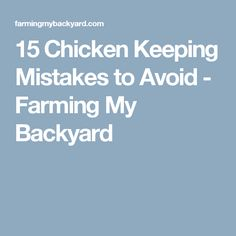 15 Chicken Keeping Mistakes to Avoid - Farming My Backyard