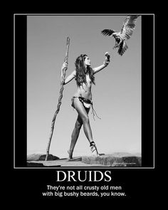 Druids...They're Not Old Crusty Men with Big Bushy Beards, You Know...By Artist Unknown...