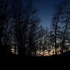 Good morning from Alaska where it's currently a balmy -6F and the sun isn't even up yet. Up today: a Costco run the hobby store and game night with friends. I suppose I'll cook and clean in there somewhere as well. #alaskamoms #momofboys #momlife #momsofinstagram #gamenight #alaska #alaskablogger #sunrise #alaskasunrise #winter #winterinalaska