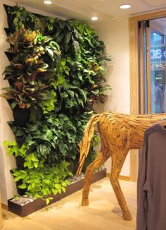 comely-living-wall-planter-indoor-living-wall-planter-indoor-comments-indoor-living-wall-planter-indoor-living-wall-planter-diy-living-wall-planter-vertical-garden-indooroutdoor-by.jpg (1000×1385)