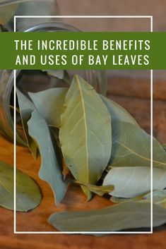 10 Amazing Health Benefits Of Bay Leaves - Natural Health Tips Beauty Herbal Remedies, Health Remedies, Home Remedies, Holistic Remedies, Lemon Benefits, Coconut Health Benefits, Bay Leaf Tea Benefits, Natural Medicine, Herbal Medicine