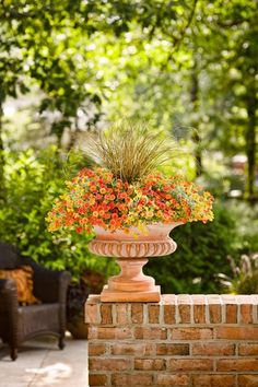 Sunbeam Dream Garden Urn. By Proven Winners.. 2 Superbells Dreamsicle Calibrachoa, 1 Graceful Grasses Toffee Twist Sedge, & 2 Flambe Yellow Strawflower. For sun. Planting recipe for a 20 inch container.