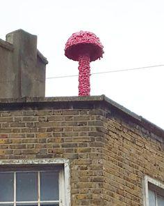 Hello the pink mushroom! . . . #hackney #eastlondon #london #streetart #londonstreetart #streetartistry #streetartlondon #mushroom #urbanart