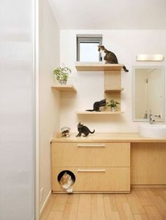 Hide the litter box in a drawer with an aesthetically pleasing cutout for a door! I think this would be great in the mud or laundry room.
