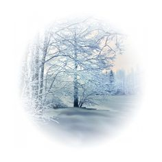 tubes paysages ❤ liked on Polyvore featuring winter, backgrounds, christmas, tubes, snow, effects, scenery, circle, circular and round