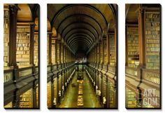 Gallery of the Old Library, Trinity College, Dublin, County Dublin, Eire (Ireland) Canvas Art Set by Bruno Barbier at Art.com