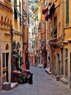 Portovenere - Genoa, Italy / by fotocd
