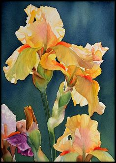 Video of me painting this yellow iris: http://www.youtube.com/watch?v=6vUkZ4otcf8 My FB page: https://www.facebook.com/KrzysztofKowalskiWatercolorist