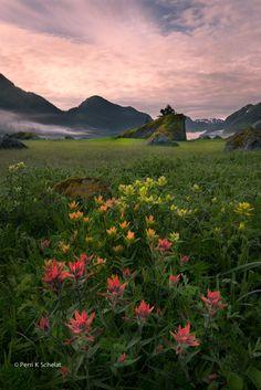 Dundas Bay, Glacier Bay National Park, Alaska by Perri Schelat