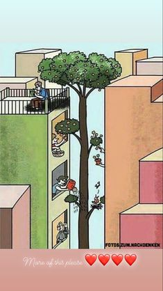 #natureisamazing #natureisbeautiful Tomorrow Is A New Day, Arch, Outdoor Structures, Garden, Plants, Longbow, Garten, Lawn And Garden, Gardens