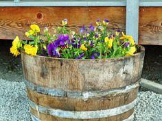 Typical Alaska deck planter.