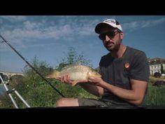 Pêche au feeder en fleuve et en rivière - Heavy Feeder  #feeder #fleuve #heavy