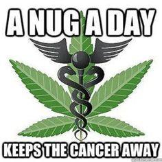 Nug a day