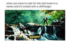 yeeeeeeeeeeessssssssss wen im reading warriors and there's a cliffhanger...