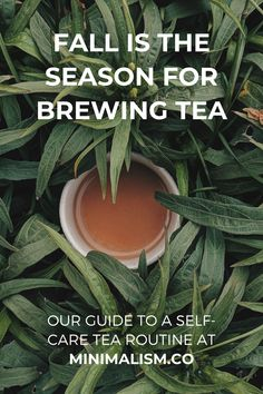 Our guide with excerpt from George Orwell will help you create a healthy self-care routine with brewing and drinking tea. Brewing tea can be extremely beneficial for your mental and physical health, here's how. Different Types Of Tea, Japanese Minimalism, Perfect Cup Of Tea, Cookery Books, Tea Strainer, George Orwell, Fun Cup, Brewing Tea, Best Tea