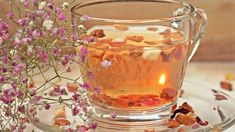 what is the best weight loss tea detox Weight Loss Tea, Best Weight Loss, Losing Weight, What To Plant When, Hinchazón Abdominal, Tea For Colds, Organic Loose Leaf Tea, Kolaci I Torte, Glass Tea Cups