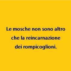Giusto!!!!