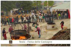 #Cuocere le #castagne