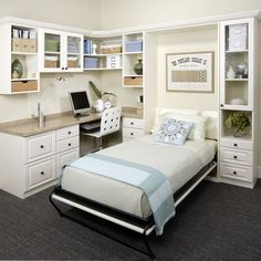 Houzz | Murphy Bed Office Home Design Design Ideas & Remodel Pictures