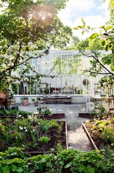 Porch Garden, Garden Pots, Vegetable Garden, Home And Garden, She Sheds, Take Me Home, Easy Garden, Gardening For Beginners, Garden Inspiration