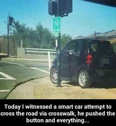 Small car use crosswalk? Lol RIDICULOUS!Funny Pictures Of The Day