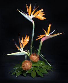 contemporary floral arrangement images | Contemporary Arrangements # 6