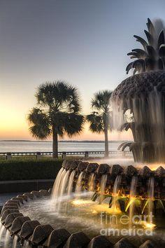 Charleston Pineapple Fountain in Charleston SC by Dustin K Ryan Photography