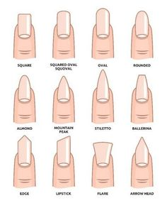 Illustration of Different nail shapes Fingernails fashion Trends vector art clipart and stock vectors. Image The post Illustration of Different nail shapes Fingernails fashion Trends vector art c appeared first on nageldesign. Summer Acrylic Nails, Best Acrylic Nails, Acrylic Nail Designs, Spring Nails, Squoval Acrylic Nails, Round Nail Designs, Simple Acrylic Nails, French Tip Acrylic Nails, Neutral Nail Designs