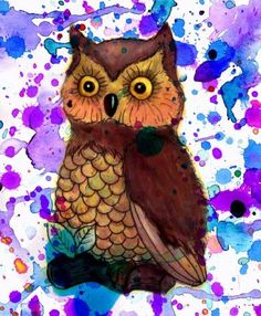 Owl with water color splatters