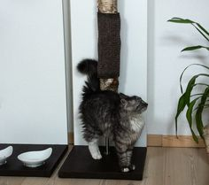 Kratzbaum für Katzen FURcat scratch - ein Designerstück von FURniture smart living bei DaWanda  // cat tree for cats by FURniture smart living via DaWanda