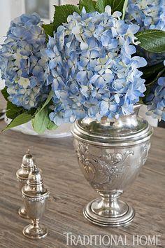 Super wedding blue and silver vase 61 Ideas Simply Beautiful, Beautiful Flowers, Beautiful Homes, Blue Hydrangea, Hydrangeas, Hydrangea Garden, Bouquet, Silver Flowers, Silver Vases